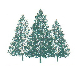 Sterling Forest Partnership tree logo